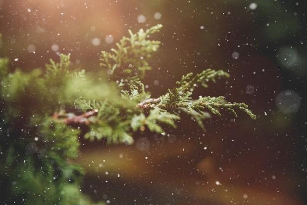 クリスマス コロナ