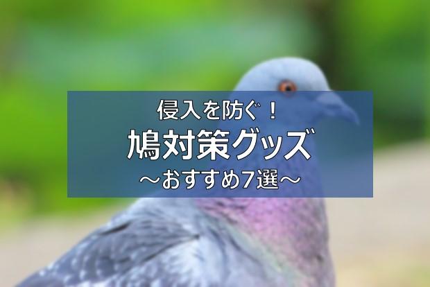 鳩対策グッズ 鳩よけ
